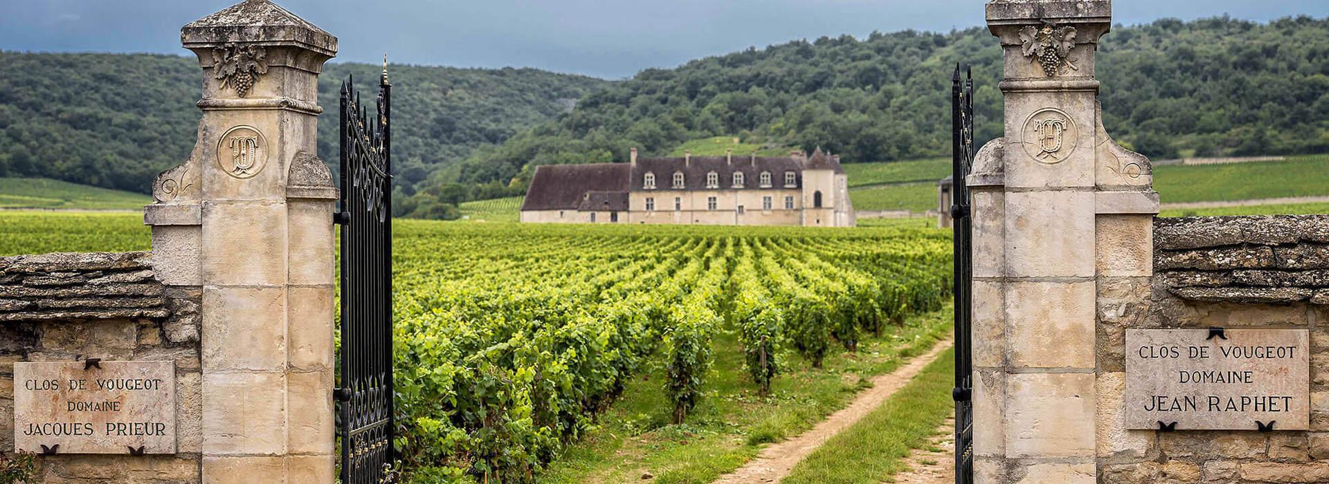 Vins Grands Crus